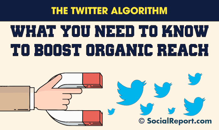 The_Twitter_Algorithm-_What_You_Need_To_Know_To_Boost_Organic_Reach.png